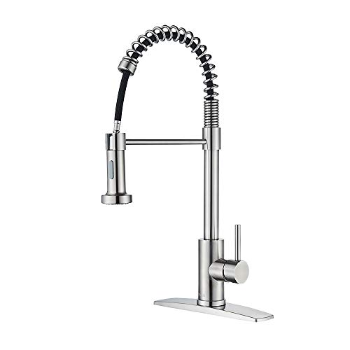 FORIOUS Kitchen Faucet with Pull Down Sprayer, Commercial...
