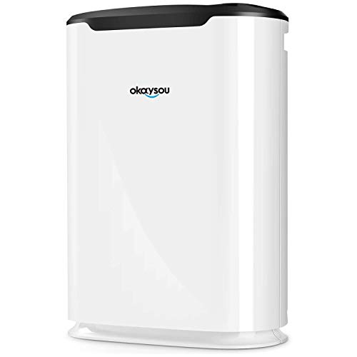 Okaysou Air Purifier with Washable Ultra-Duo 2 Filters,...
