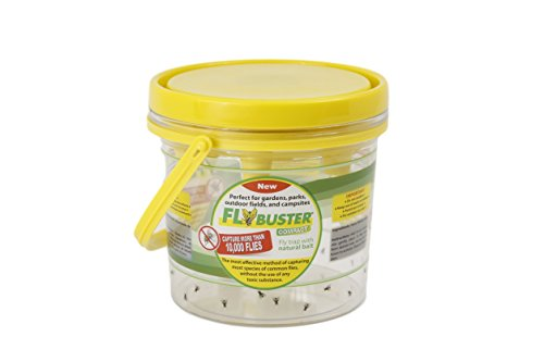 Flybuster Fly Trap - Outdoor Living, Fly and Pest Control...