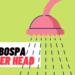7 BEST Turbospa Shower Head